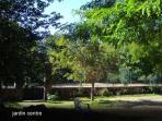 jardin  face a bois de chênes