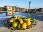 piscina estiva struttura attigua