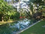le couloir de natation