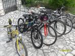 5 Bikes various sizes 6 years to adult available to use.