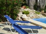 The pool and rockery from the lounger area