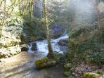 Une jolie promenade le long d'un ruisseau
