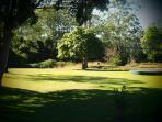 Our backyard.