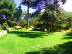 Large expansive lawn