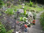 Garden / Y Gardd