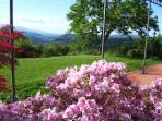 Spring at Villa Torre di Colonne #holidayrentalsfiesole