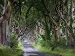 Dark hedges /Game of Thrones 5 min drive from cottage