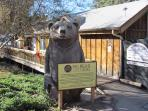 BIG BEAR ZOO NEARBY!!!