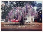 Mardi Gras Bead Tree