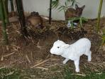 Cute replica play animals in the kidz play area