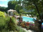 Secluded garden and pool
