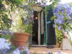 fioritura nella casa padronale