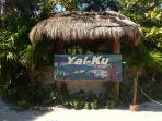 Yal-Ku lagoon is a great place for snorkeling where gorgeous fish are not intimidated by humans (25 minutes driving)