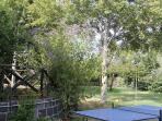 giardino con Tavolo Pong Pong