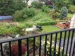 Backyard View from balcony