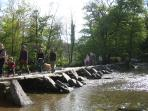 Tarr Steps, a great place for a walk along the river Barle, followed by a cream tea