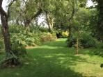 The orchard gardens provide plenty of room for pets and children to run and play..