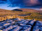 The Burren Region