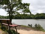 Promenade autour de l'étang du Ter situé à 50m