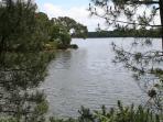 Autre vue de l'étang du Ter