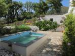 Plunge pool and part of the garden