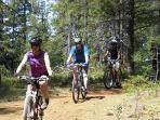 Lots of bike/hiking trails near cabin.