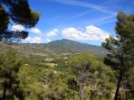 A view towards Mont Ventoux.  It takes about 45 mins to get to the top by car.