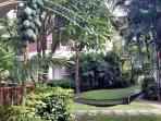 Relax in the hammock set in tropical gardens and watch the papaya growing. The gardens are amazing.