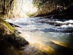 Big Elkin Creek