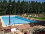 piscine avec vue sur la nature