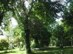 giardino fronte appartamento