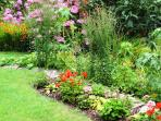 Colourful flower borders