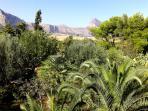 Vista giardino (particolare mare-montagna - Riserva Naturale Orientata di Monte Cofano)