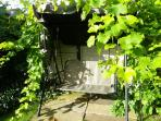 The swing seat under the grapevine