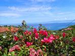 View from Hills near villa