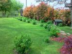 vista giardino fronte casa