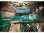 Bounce Below - Amazing new underground trampolining experience nearby