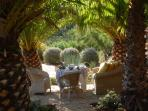 The palm garden, a shady place to relax and eat