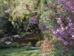 Beautiful Springtime garden May!!
