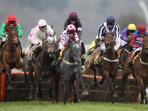 Horse racing at nearby Cheltenham and Worcester