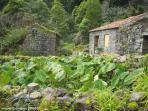 Sanguinho Trail (10 min)