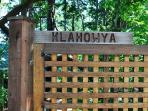 Klayhowya - means 'welcome' in the native trade language of the Pacific Northwest.
