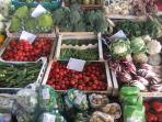 Sant'Ambrogio morning market (fresh food!)