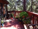 Back deck in the summer sun.