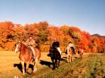 Fall foliage ride -right outside your door