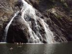 Swimming in the pools formed at the base of Dudhsagar Falls Goa