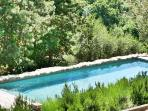 Casa Ospicchio: View of the pool from the terrace