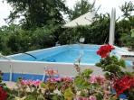 pool, shared with other guests -  piscina , in comune con altri ospiti