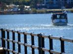 Catch the cross river ferry to explore Bulimba