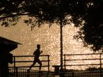 Enjoy morning jogs along the river